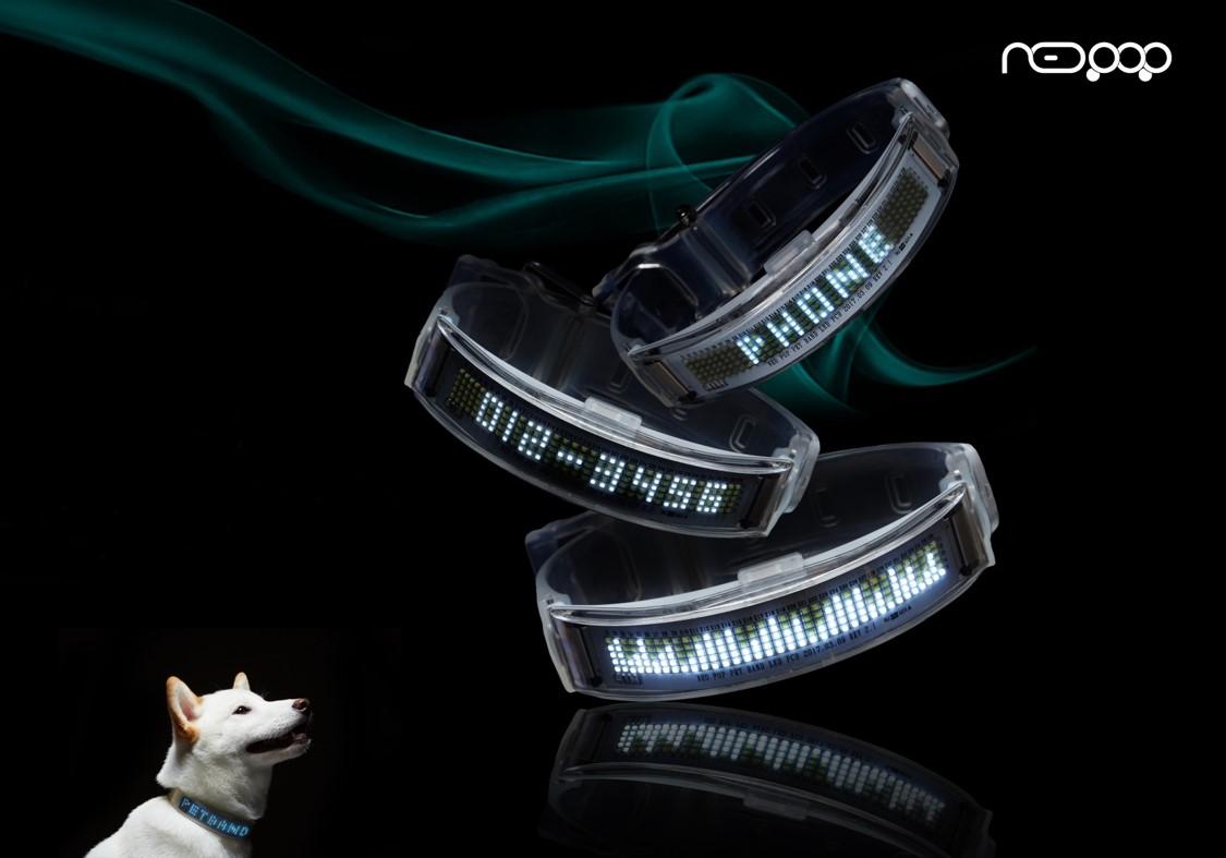 네오팝 LED Smart Pet Band를 장착한 반려동물 사진 2